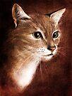 catface by Evgeniya Sharp