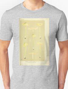 Illustrations of British Fungi by Mordecai Cubitt Cook 1891 V3 0291 AGARICUS  LEPTONIA  CHLOROPOLIUS Unisex T-Shirt
