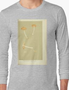 Illustrations of British Fungi by Mordecai Cubitt Cook 1891 V3 0335 AGARICUS  ECCILIA  ACETABULOSUS Long Sleeve T-Shirt