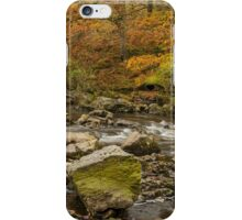 Across the River Elan iPhone Case/Skin
