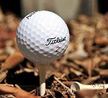 Golf Course by carlosporto