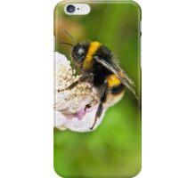 Bee on Blackberry Flower iPhone Case/Skin