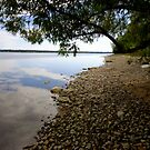 Shore Lines by goddarb