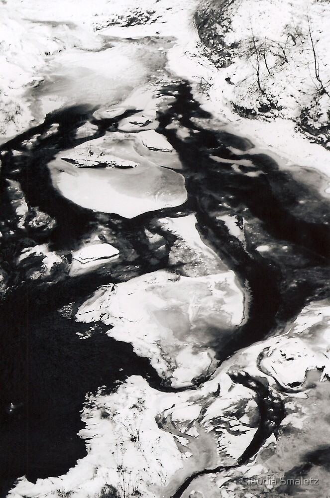 Icy Continents, Ithaca, New York, 2009 by Claudia Smaletz