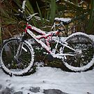 Bicycle in Snow by seshadri