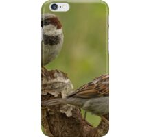 House sparrows iPhone Case/Skin