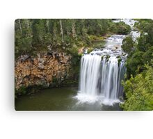 Dangar Falls, Dorrigo, Australia Canvas Print