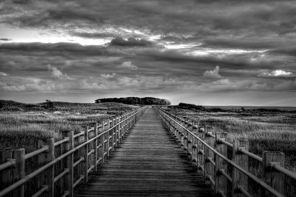 Know Your Path by Tim Mannle