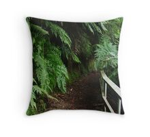 Tramline Walkway, Walhalla Throw Pillow