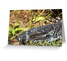 Portrait of a Lace Monitor Greeting Card
