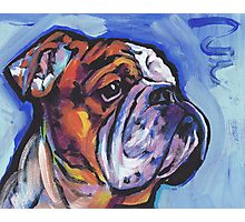 English BullDog Bright colorful pop dog art Photographic Print