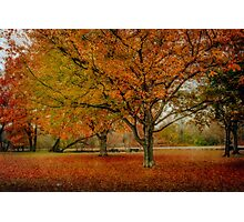 Newengland Colorful November. Photographic Print
