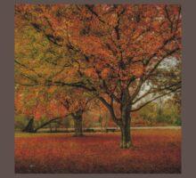 Newengland Colorful November. Baby Tee