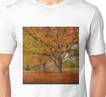 Newengland Colorful November. Unisex T-Shirt