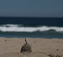 Forgotten Sand Castle by SueGPhotography