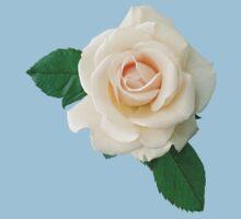 Gentle white rose by Olga Chetverikova