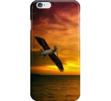 New Year in Florida iPhone Case/Skin