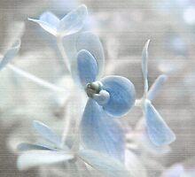 Blue Heaven by Susan Werby