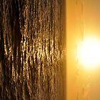 SUNRISE GLOWING ON WATER by niki78