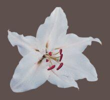 WHITE FLOWER One Piece - Short Sleeve