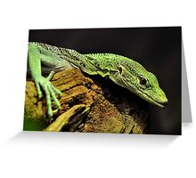 Green with Envy Greeting Card
