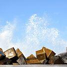 WAVES CRASHING ROCKS by niki78