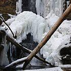 Lake Falls by Richard Williams