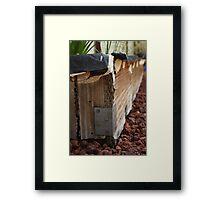 Backyard Herb Garden Framed Print