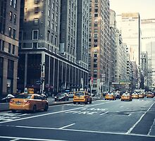 Traveling Up Park Avenue by W. Lotus
