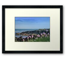 The rocky walk at Bangor | Irish Landscape | Pictures Of Ireland Framed Print