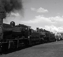 Steam Train On Show by boydcarmody