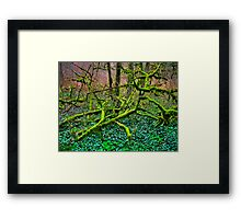 pincer movement Framed Print