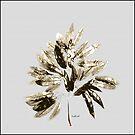 Leaves of Many Shades by mindprintz