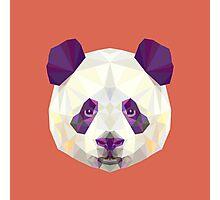Geometric Panda Photographic Print