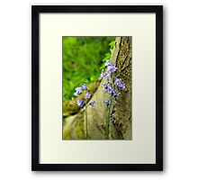 Bluebells and Tree Framed Print