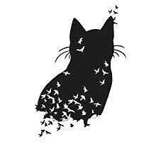 Raven Cat Photographic Print