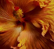 Russet Hibiscus-Kew Gardens London by Margi