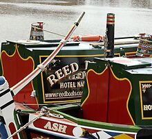 Narrowboats at Gloucester docks, UK by buttonpresser