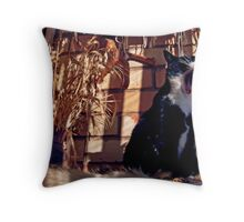 Staring soloist at the All-star Vernal Evening Super-show Throw Pillow