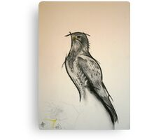 The Black Kite - Charcoal - English Willow Canvas Print