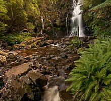 Mathinna Falls by traveller