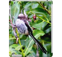 Juvenile long tailed tit iPad Case/Skin