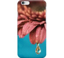 Fresh as a Daisy iPhone Case/Skin