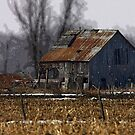 Old barn in snow by Jim Cumming