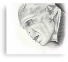 Lord Voldemort Canvas Print