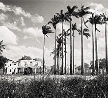 Abandoned House, Mozambique by AntSven