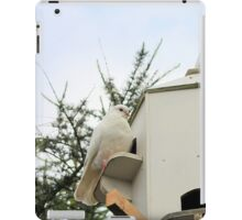 Doves on the cott iPad Case/Skin
