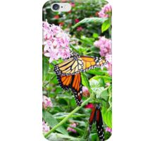 FLUTTERS AND FLIES iPhone Case/Skin