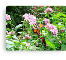 FLUTTERS AND FLIES Canvas Print