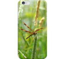 WINGS OF TRANSFORMATION iPhone Case/Skin